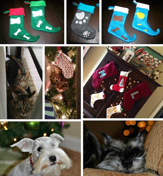 Christmas Pet Stockings for Cats and Dogs