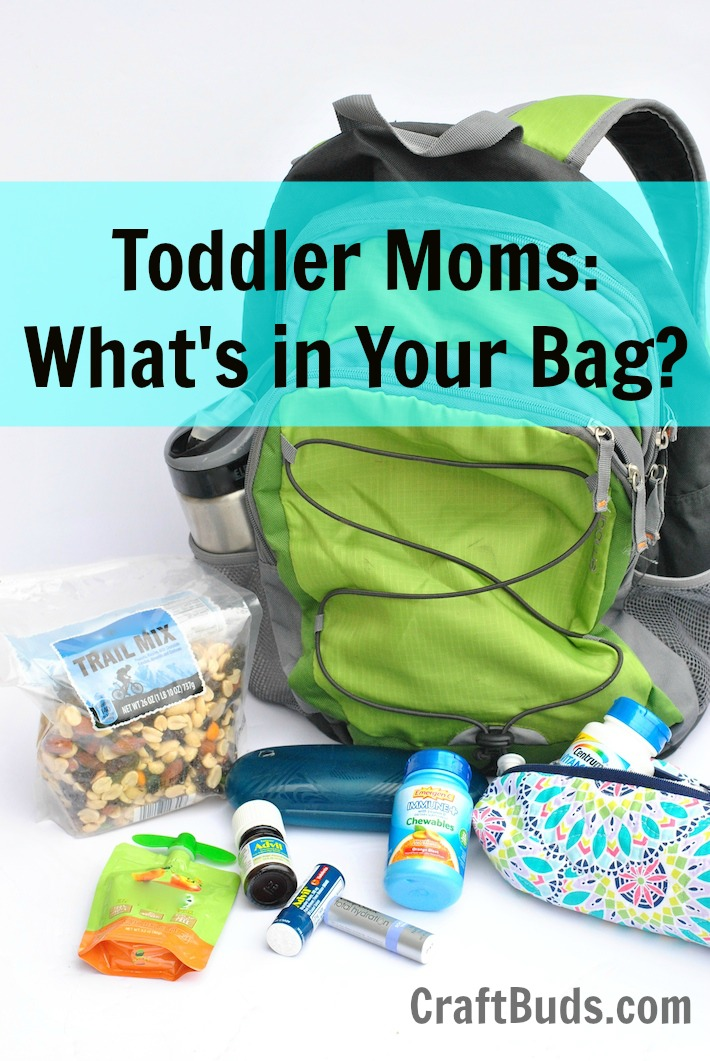 Toddler Mom Purse Essentials