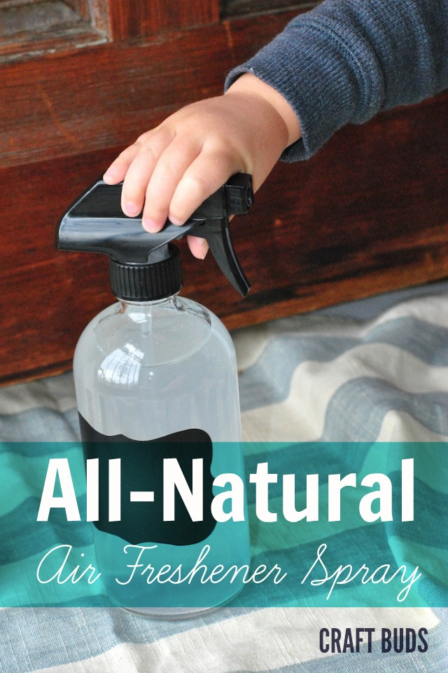 All-Natural DIY Air Freshener Spray